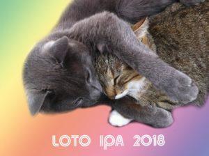 loto IPA 2018