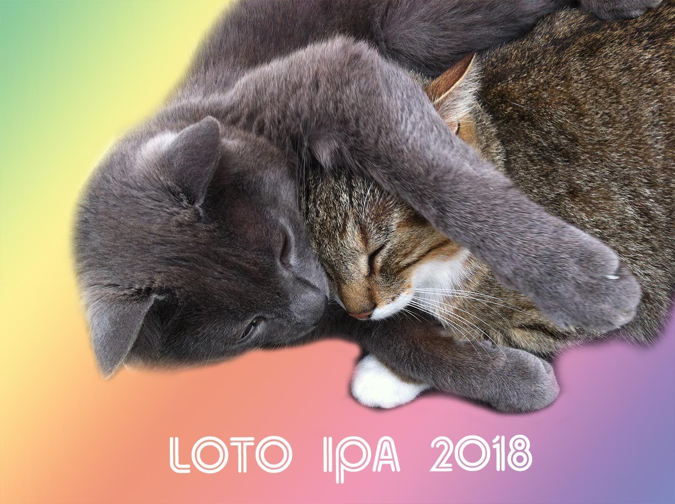 Loto 2018 rendez vous le 25 Novembre à Draveil
